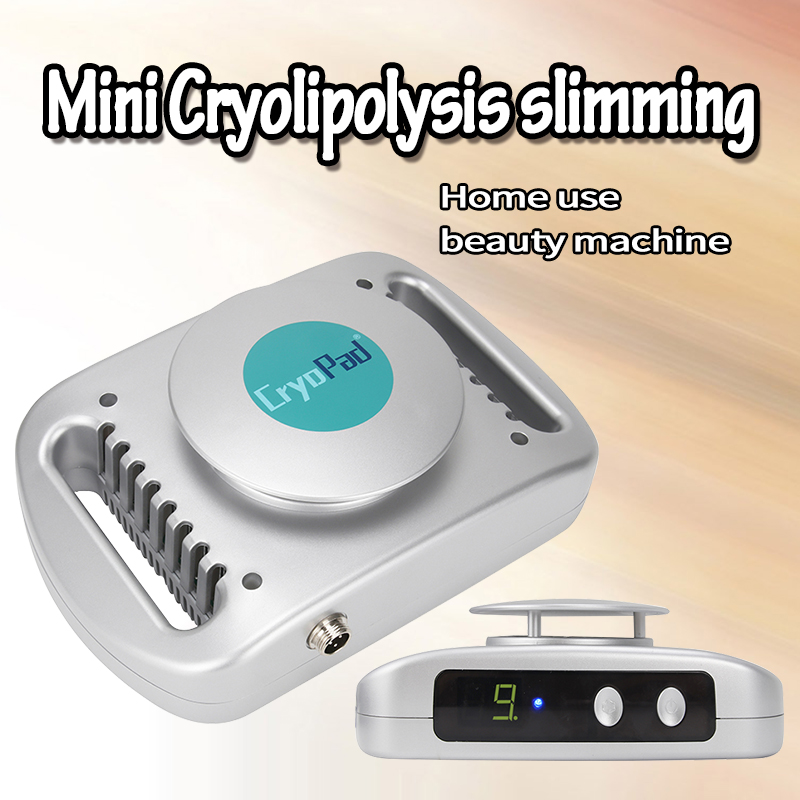 2019 Mini Antifreeze Slimming Machine For Skin Tightening CE Approval Home Use Or Salon