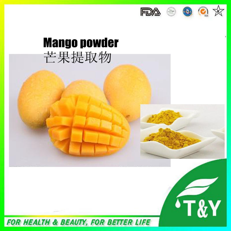 Online Shop Hot Selling Natural African Mango Juice Powder 600g