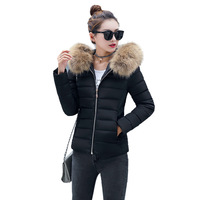 BRZFMRVL Plus Size S 4XL Winter Coat Autumn Spring Thicken Warm Coat With Fur Hooded Padded