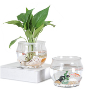 Simple Life Billiard Glassware Vase Home Decoration Hydroponic Bottle Transparent Micro Landscape Vase Mini Fish Tank