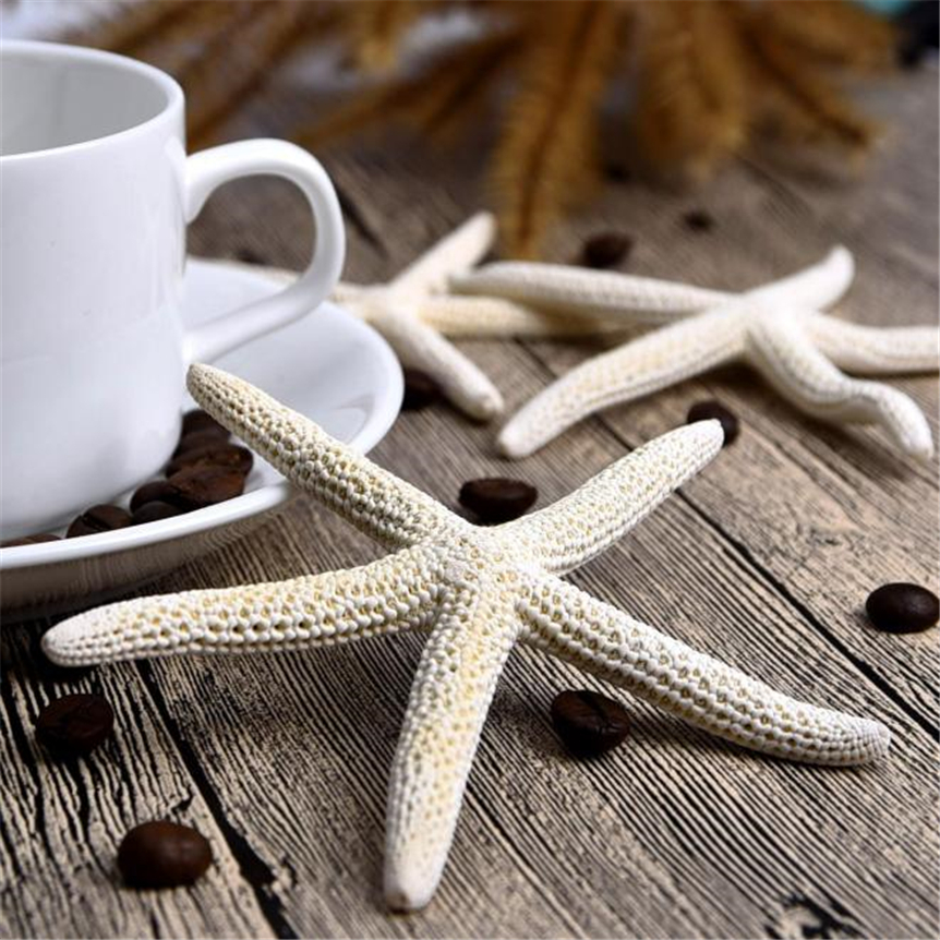 10pcs/lot Shell Coral Medium Crafts 6-10cm Yangtz Decoration Natural Starfish Beige White Sea Star Wedding Party