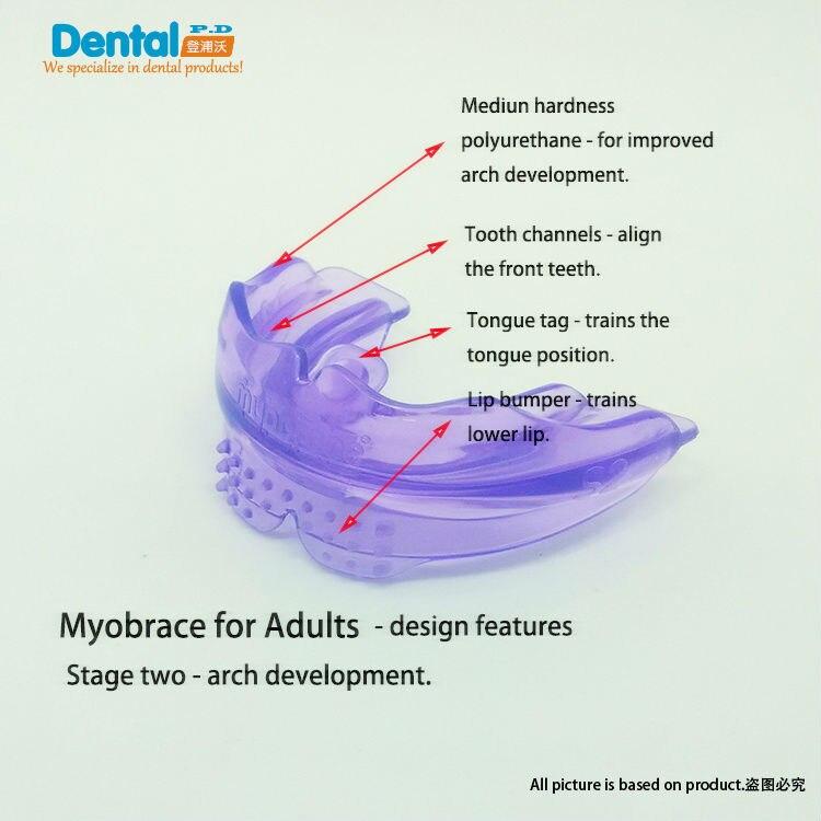 Buck dents pour Adultes Dent Orthodontique Appareils Formateur Alignement Bretelles Becs Dents Droite/Alignement Pour Adultes