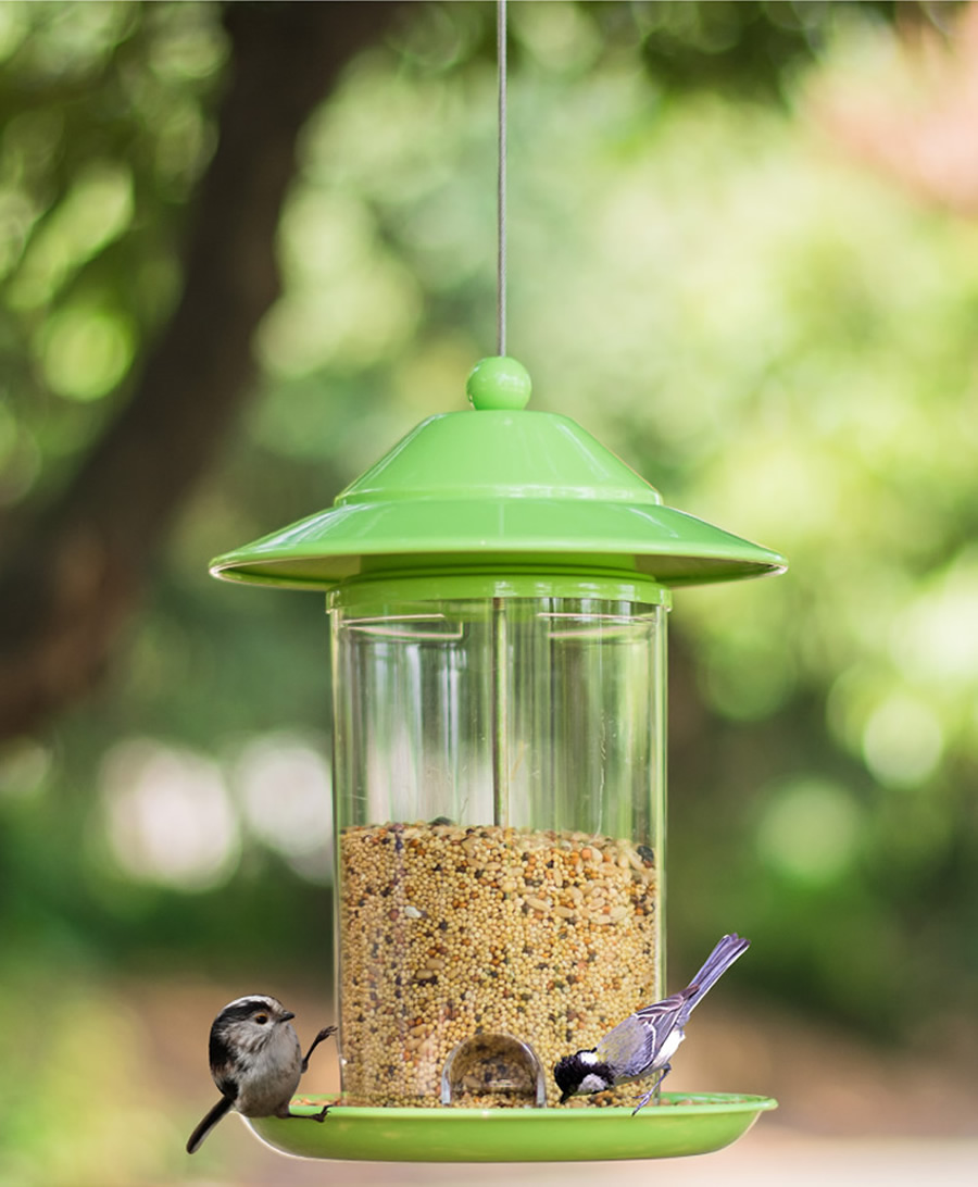 Bird Feeder Outdoor Pet Wild Food Container Park Garden