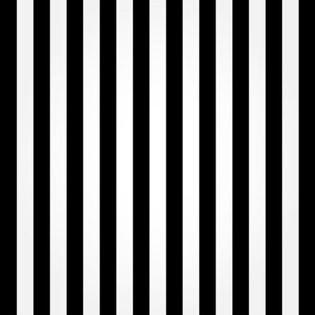 6x6ft photography backdrops vinyl black and white striped background