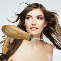 CHJ Hair Dryer Professional Salon Hairdryer Blow Dryer Ionic High Power Hair Style Tool Household Electric Hair Blower