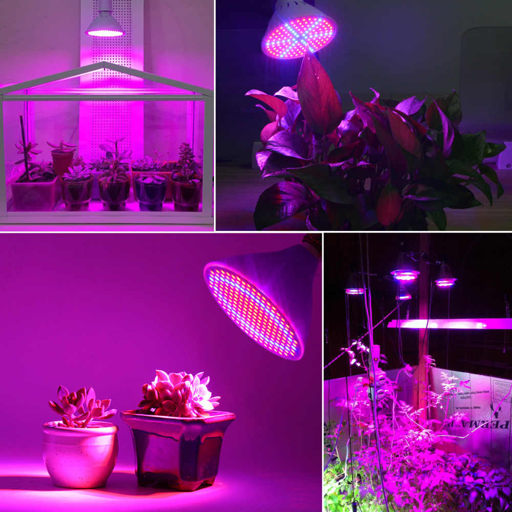 36W200 Led Grow Light Bulbs Lamp Plant Flower Vegetable Growing lights for Indoor greenhouse hydroponics system+Desk Holder Clip
