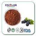 sell organic grape seed extract powder alcohol 95