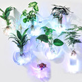 O. RoseLif 1 pièces créatif nouveau mur verre Vase avec lumière LED Terrarium hydroponique fleur vase vaso maison bureau barre décor|wall glass vases|glass vase|glass wall vase -