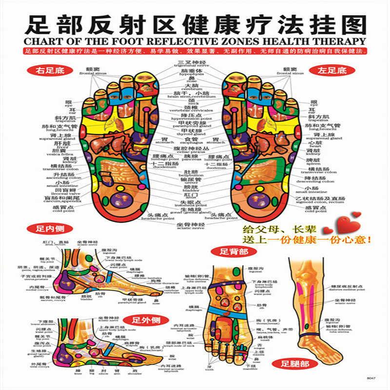 7 قطعة المجموعة الوخز بالإبر تدليك نقطة خريطة الصينية والإنجليزية الزوال العلاج بالابر نقاط الملصقات الرسم البياني جدار خريطة ل الطبية التدريس Aliexpress
