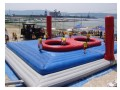 ball playground for sale