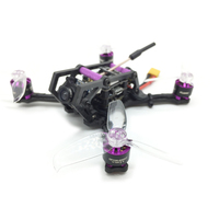 HGLRC HORNET 120mm FPV Racing Drone PNP BetaFlight F4 OSD 13A Blheli_S ESC 5.8G 25/100/200/350mW VTX DIY RC Multi Rotor Models