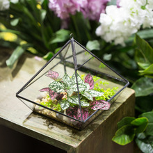 15.7cm Hanging Vertebral Glass Geometric Terrarium Planter Bonsai Landscape jewlery Box Handmade Wall Hanging Decor Flower Pot