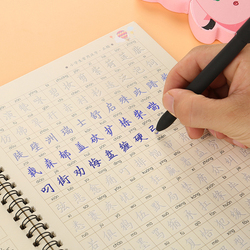 3D Reusable Groove Calligraphy copybook Erasable pen learn Chinese characters adultskids children Chinese writing books hsk