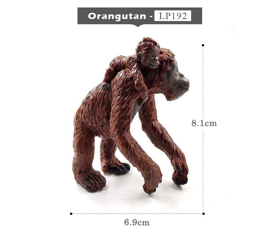 详情页-3款-红毛猩猩背崽-长臂猩猩-树猿_02