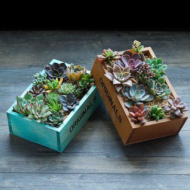 1 unid Maceta de plantas suculentas Macetas de madera natural para ...