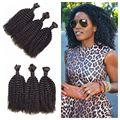 4a,4b,4c Afro Kinky Curly Human Braiding Hair Bulk No Weft 8-30inch 3pcs lot Mongolian Virgin Bulk Hair