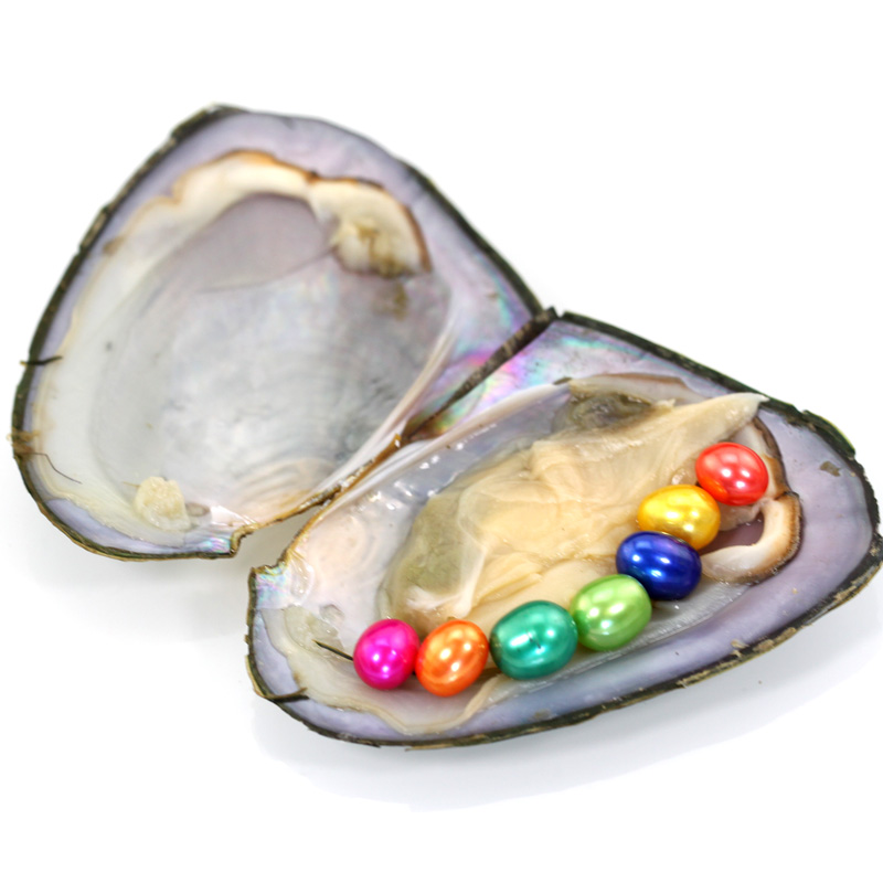 5pcs/lot New Rice Pearls Mini Monster 8 Vibrant Colored Oval Pearls in Freshwater Oyster Shell Mix Color Pearl Mega Mussel FP431