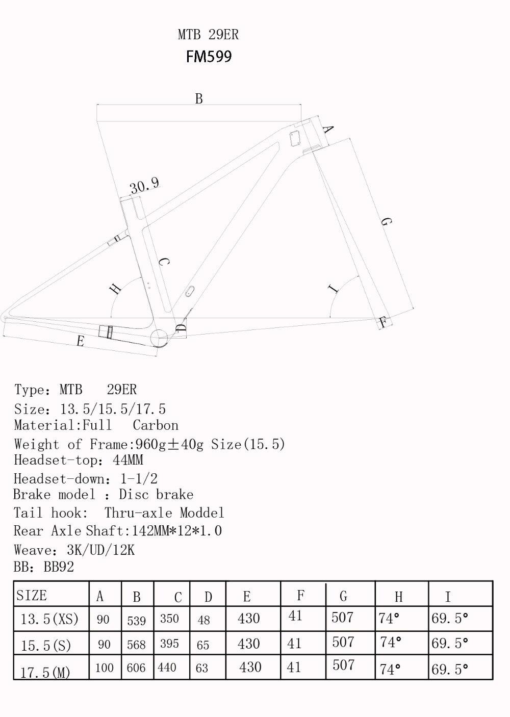 FM599 geometry
