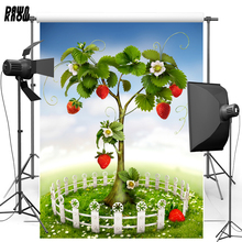 DAWNKNOW Fairy Tale Vinyl Photography Background For Wedding Strawberry Polyester Backdrop For Children Photo Studio F1706 free shipping fairy tale digital kids studio photography background backdrop 5x10ft baby children fabric backdrop a 1187