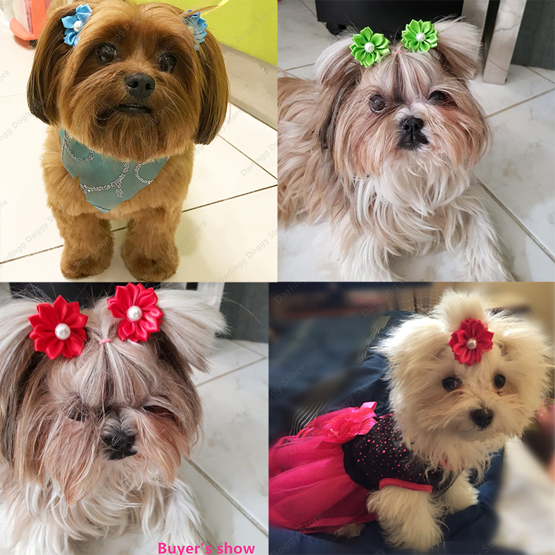 Bright Pet Puppy Dog Cat Hair Bows Rubber Bands Flowers Pearls Pet Grooming Bows Hair Accessories Pet Supplies