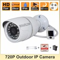 HOSAFE 1MB1W 1.0MP 720P HD IP Camera w/ 24-IR-LED Night Vision Motion and Email Alert ONVIF Support Free Shipping