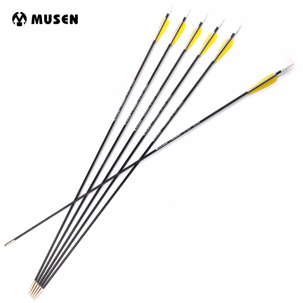 6/12/24Pcs 30 Inches Carbon Arrows Spine 1000 Diameter 5mm Outer-type Tips Training Arrow For Archery Hunting