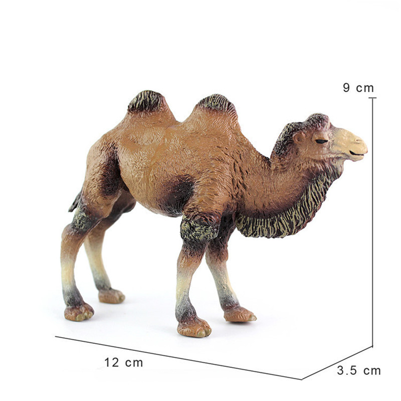 Simulated Animal Model Toy Wildlife Lion Camel Model Toy Children 39 s Intelligence Model in Biology from Toys amp Hobbies