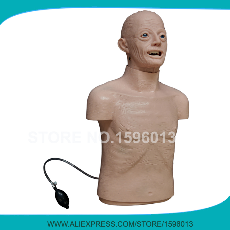 Lifelike Half Body CPR Training Manikin,Elderly CPR and Airway Intubation Manikin whole body basic cpr manikin style 200 male female nursing manikin