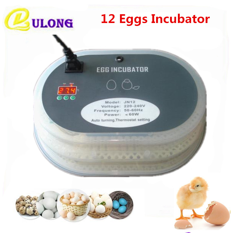 Hot Sale mini poultry incubator machine home use small auto hatcher equipment tool with temperature control  chinese hatching best price mgehr1212 2 slot cutter external grooving tool holder turning tool no insert hot sale brand new