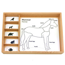 Montessori Language Materials 3 Parts Card Animal Growth Cards Learning Educational Wooden Toys Juguetes Montessori E2864H