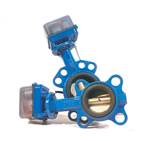 DN40,DN50,DN65 Electric Butterfly Valve,12/24V AC/DC,AC220V Ductile Iron Motorized Butterfly Valve