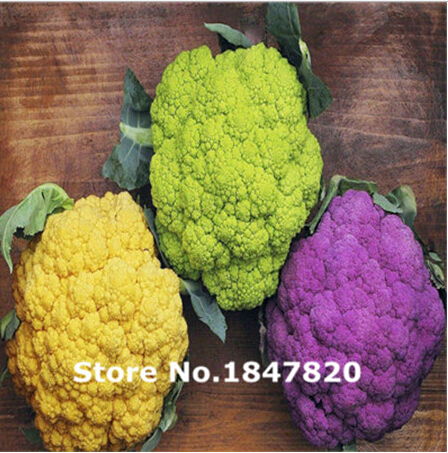 Rare Cauliflower Seeds, 10 kinds 100 Mix Colors vegetable Seeds, High survival Rate for Home and Garden.