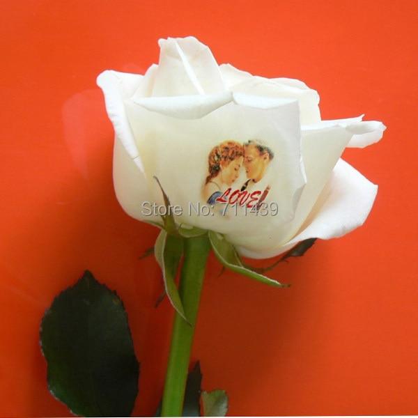 δωρεάν μηχανή εκτύπωσης λουλουδιών - Τέχνη νυχιών - Φωτογραφία 6