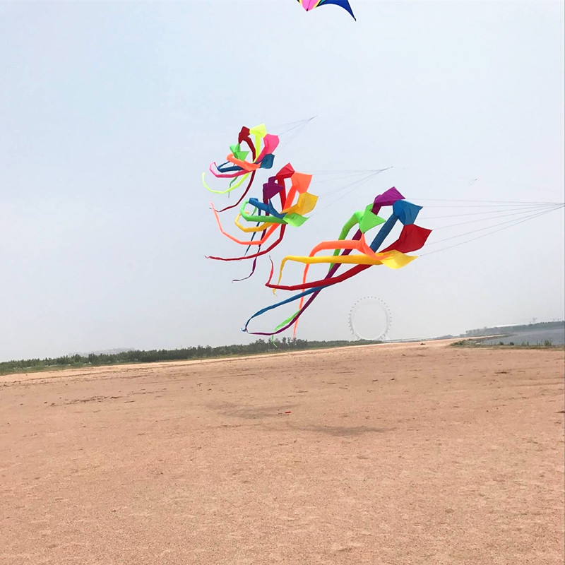 free shipping 6m large rainbow windsock kites surf ripstop nylon kite flying reel kevlar paragliding fish giochi outdoor adulti
