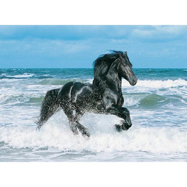 Black Horse running in Waves
