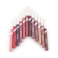 12 Colors Waterproof Lipstick Beauty Makeup Matte Lipstick Lip Pencil Long Lasting Smooth Liquid lipstick Lip Gloss Make Up Tool