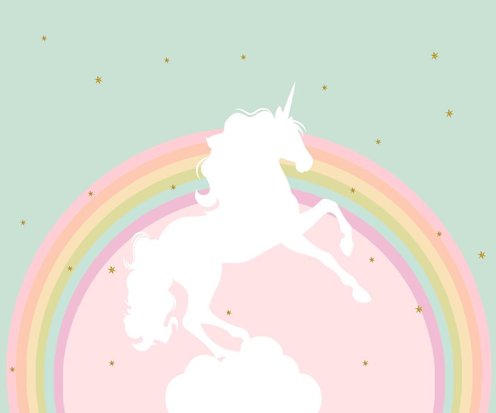 Rainbow Unicorn Happy Birthday Photography Backdrops Photo
