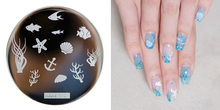 1PC New Nail Art Stamping Starfish/Shell/Goldfish Designs DIY Gel Polish Template Tools 5.5*5.5cm Templates