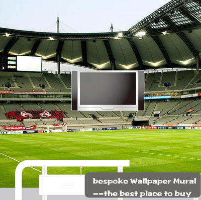 Wholesale 3d mural of Sports football stadium wall mural for TV