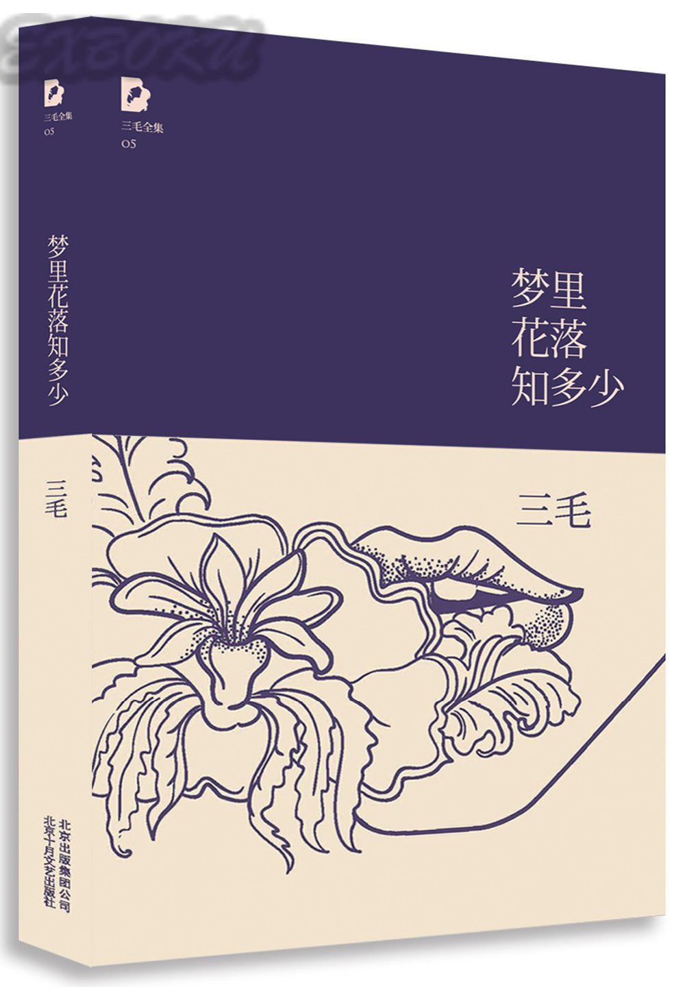 Never-flower In Never-dream Meng Li Hua Luo Zhi Duo Shao By San Mao / Chinese Most Famous Story Fiction Book