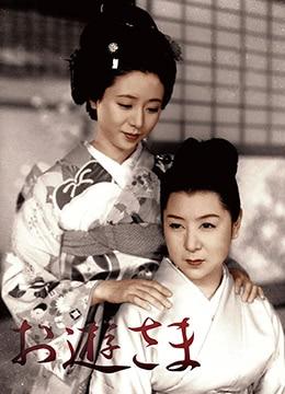 《阿游小姐》1951年日本剧情电影在线观看