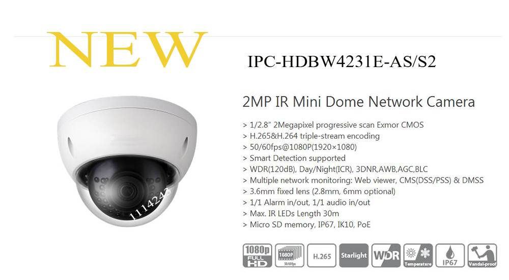 Free Shipping DAHUA Security IP Camera 2MP IR Mini Dome Network Camera IP67 IK10 with PoE