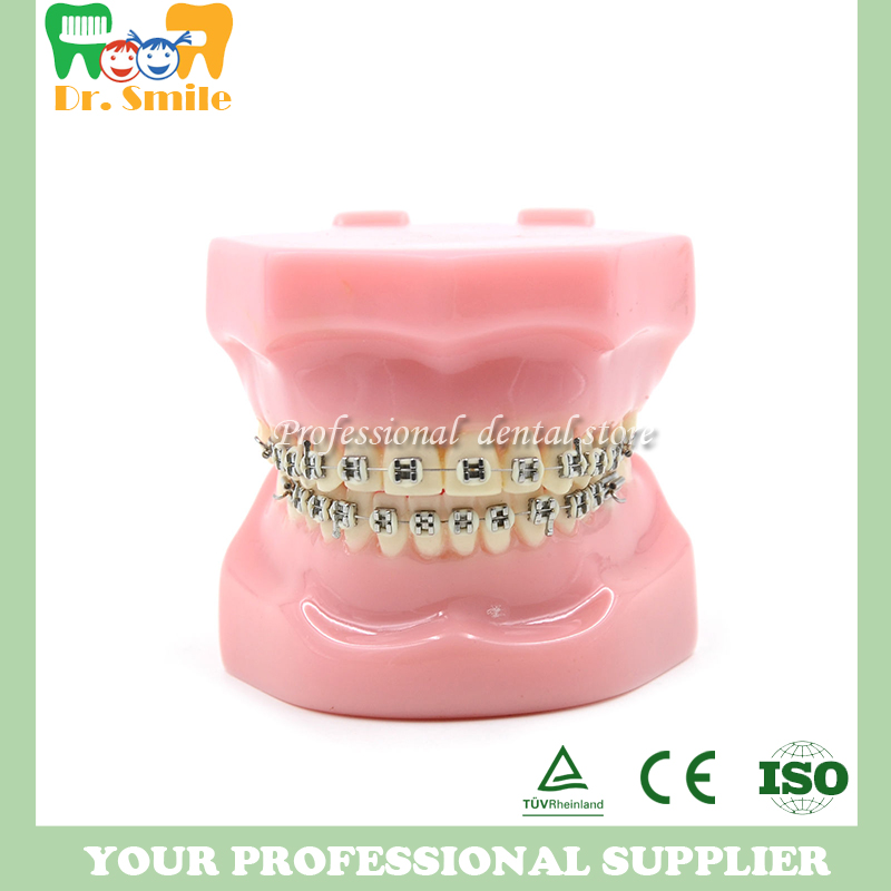 Dental Orthodontics Typodont Teeth Model Metal Brace bracket Typodont with Arch Wire dental orthodontics typodont teeth model half metal half ceramic brace bracket typodont with arch wire