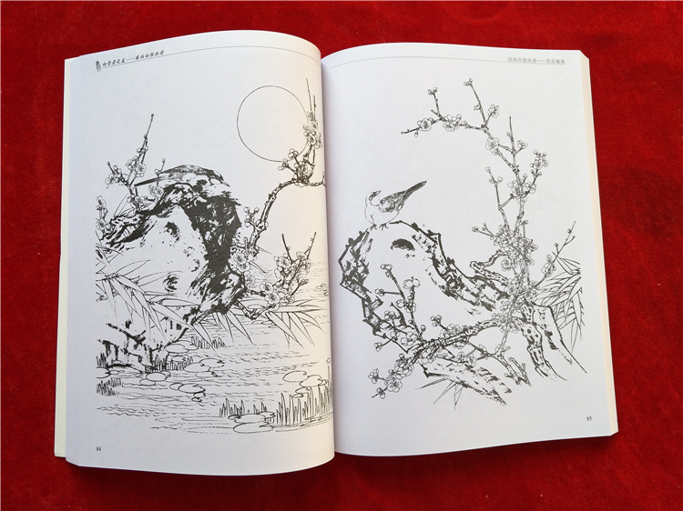 Image 5 - new Chinese painting line drawing book Color pencil Flower Birds and insect coloring book Engraving pattern for beginner-in Books from Office & School Supplies