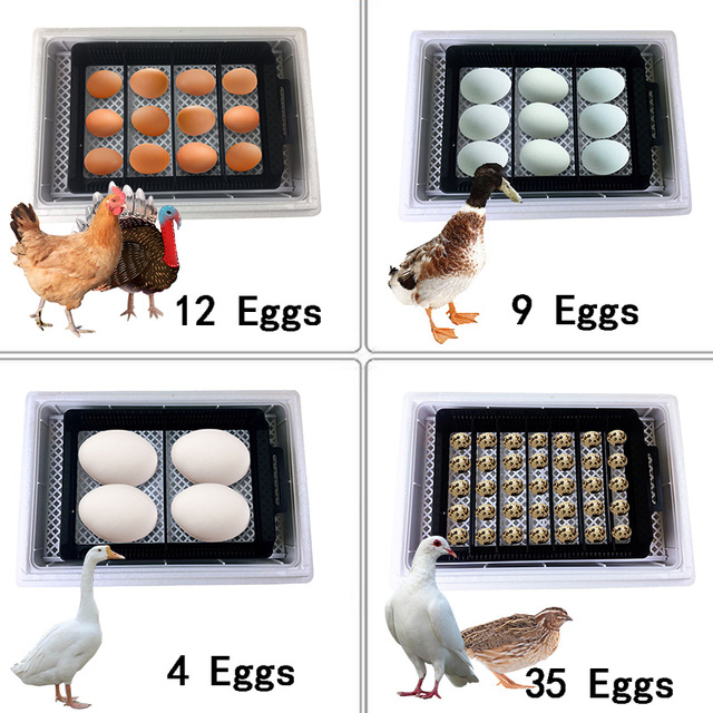 HHD Newest Best Farm Hatchery Machine 12Egg Hatchers Cheap Price Chicken Automatic Egg Incubator China for Sale Quail Brooder 6