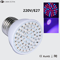 Led Grow Light Ampolletas Led E27 3W 220V Grow Lamps for Flowering Plant and Hydroponics Outdoor Spot Lighting 60Leds Bulb Lamp
