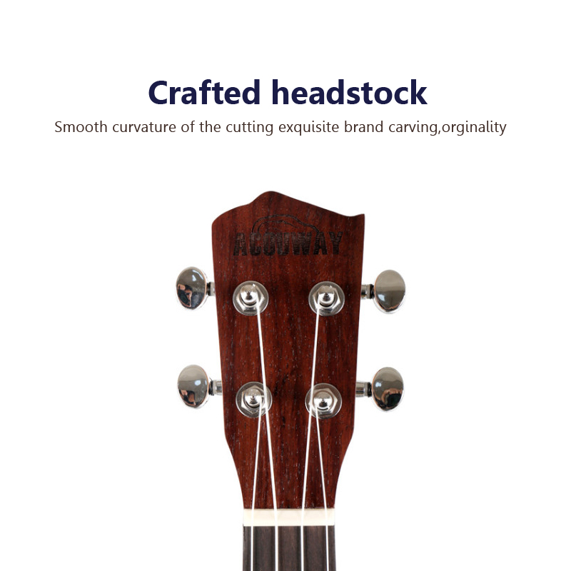 China ukelele concert Suppliers