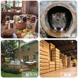 Image 5 - 6Pcs Reusable Rat Catching Mice Mouse Traps Mousetrap Bait Snap Spring Rodent Catcher