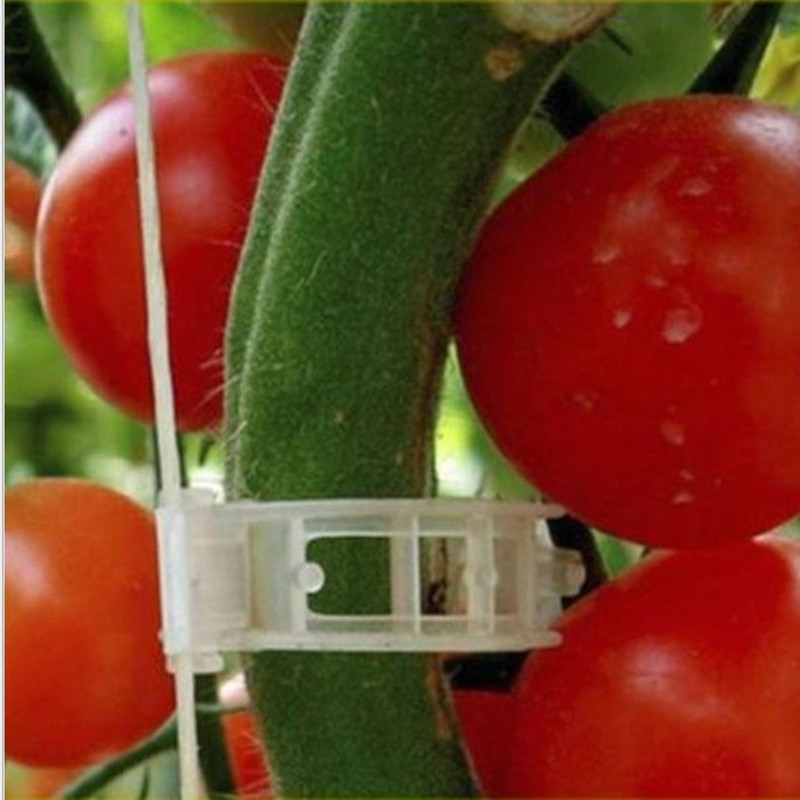 100Pcs Support Connects Vines Cages Plants Tie Tomato Vegetable Farming Clips