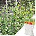 Garden Fence Polyester Plant Climbing Net Support Vine Climbing Frame Gardening Net Plant Fence Net Vegetable Plant Trellis|Garden Netting| |  -